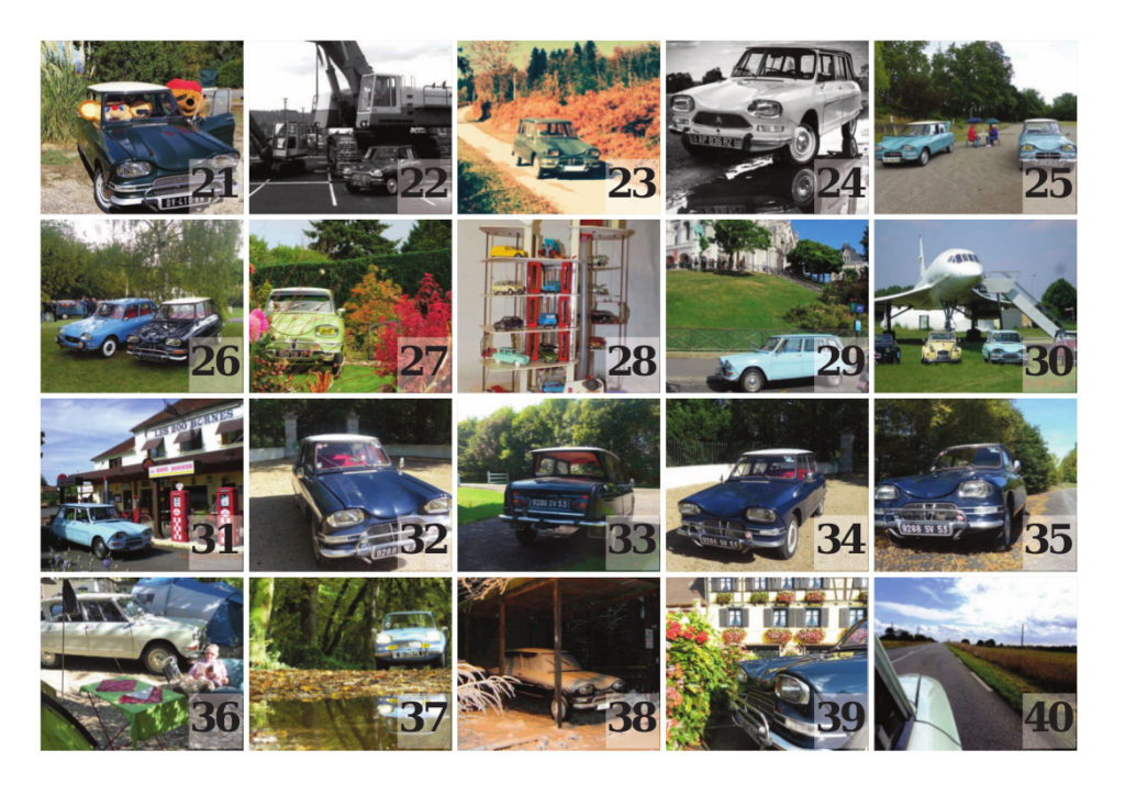20 photos suivantes du concours